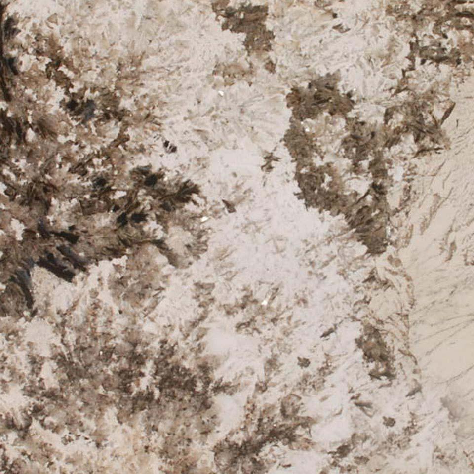 Alpine white granite countertop colonial marble granite for Countertops quartz or granite