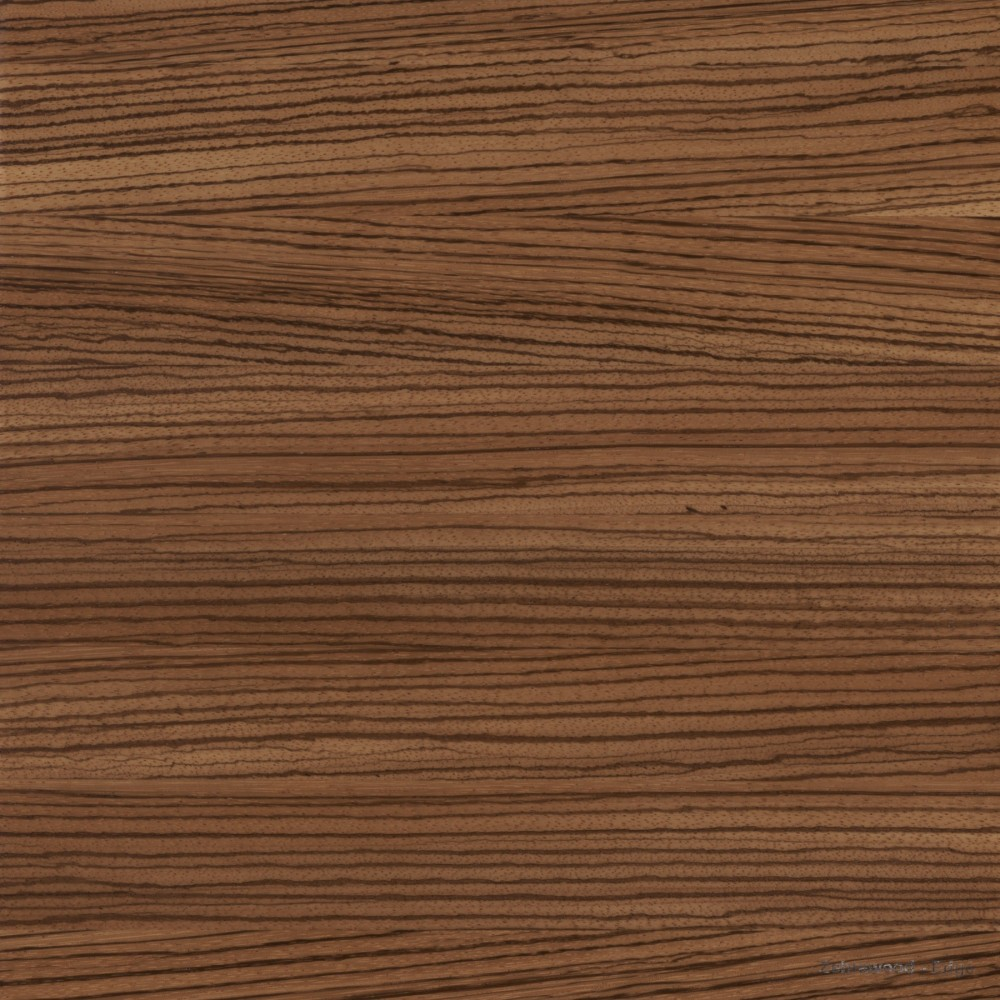 Zebrawood Edge Countertop